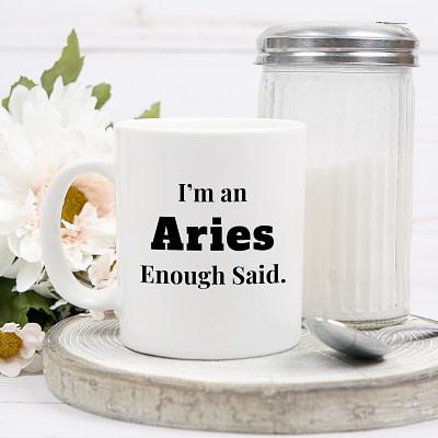 Zodiac Mug – Enough Said