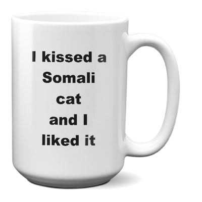 Somali Cat Mug – I Kissed A Somali Cat And I Liked It